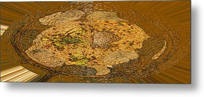 Metal Print featuring the photograph Wood Abstracted by Lenore Senior