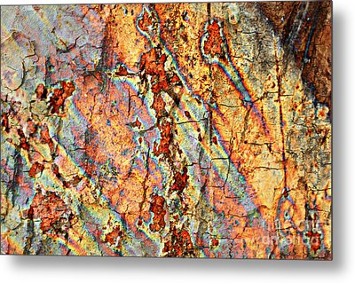 Wood And Rust Metal Print by Carol Groenen
