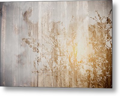 Wood Background With Branches Double Exposure Style With Instagr Metal Print by Brandon Bourdages