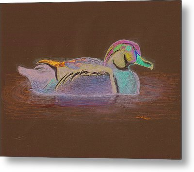 Wood Duck Metal Print by Cynthia  Lanka