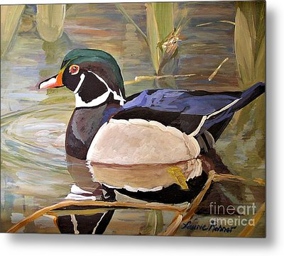 Metal Print featuring the painting Wood Duck On Pond by Laurie Rohner
