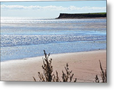 Metal Print featuring the photograph Wood Islands Beach by Kim Prowse