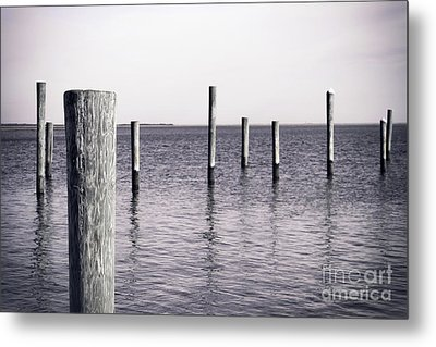 Metal Print featuring the photograph Wood Pilings In Monotone by Colleen Kammerer