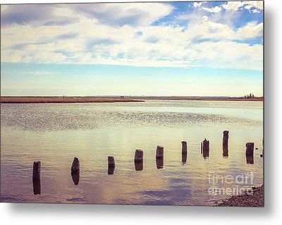 Metal Print featuring the photograph Wood Pilings In Still Water by Colleen Kammerer
