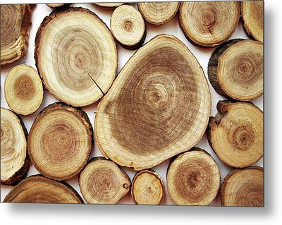 Wood Slices- Art By Linda Woods Metal Print by Linda Woods