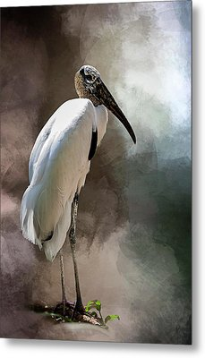 Wood Stork Metal Print by Cyndy Doty