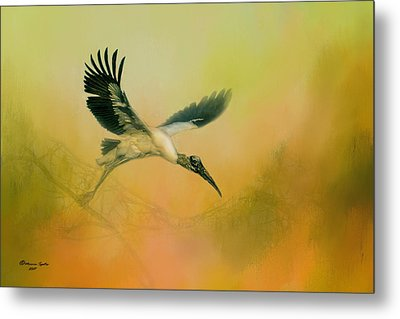 Wood Stork Encounter Metal Print by Marvin Spates