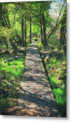 Wooded Path - Spring At Retzer Nature Center Metal Print by Jennifer Rondinelli Reilly - Fine Art Photography