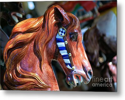Wooden Horse Metal Print by John S