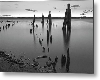 Wooden Soldiers Of The Hudson Monochrome Metal Print