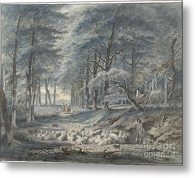 Woodland  Metal Print by Celestial Images