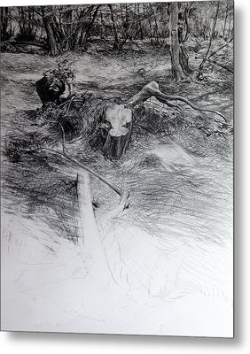 Metal Print featuring the drawing Woodland by Harry Robertson