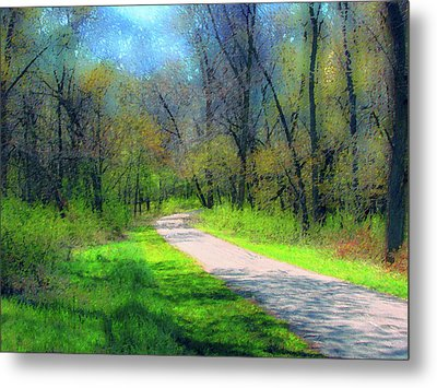 Woodland Trail Metal Print
