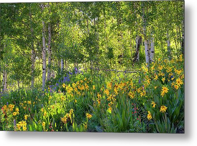 Metal Print featuring the photograph Woodland Wildflowers by Tim Reaves