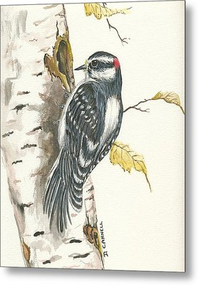 Metal Print featuring the painting Woodpecker by Darren Cannell