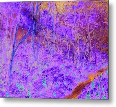 Woods By A Stream Metal Print by Dennis Vebert