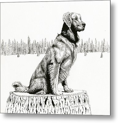 Woods Dog Metal Print