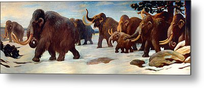 Wooly Mammoths Near The Somme River Metal Print by Mountain Dreams