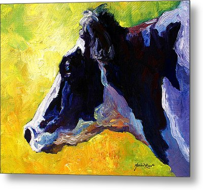 Working Girl - Holstein Cow Metal Print by Marion Rose
