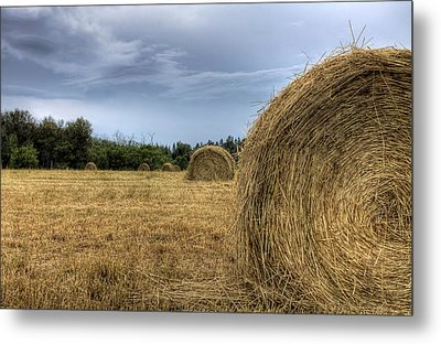 Metal Print featuring the photograph Working The Field by Gary Smith