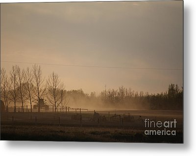Metal Print featuring the photograph Working The Field by Wilko Van de Kamp