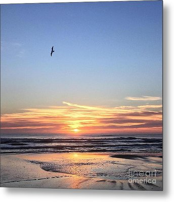 World Gratitude And Peace Day Metal Print by LeeAnn Kendall