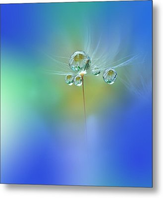 World Of Drops Metal Print by Juliana Nan