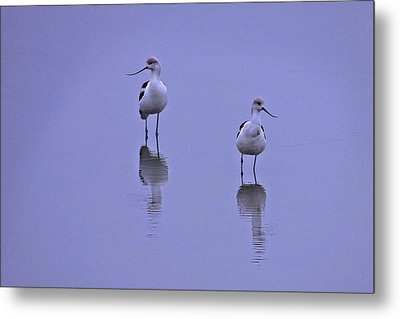 World Of Their Own Metal Print by Laura Ragland