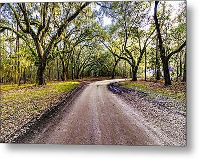 Metal Print featuring the photograph Wormsloe Road by Anthony Baatz