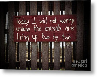 Worry Metal Print by Lynn Sprowl