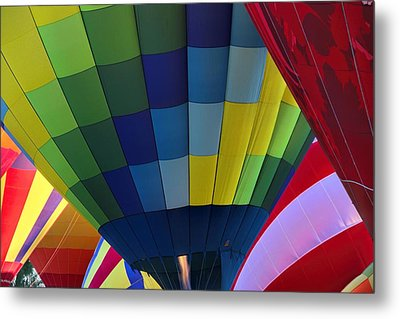 Wouldn't You Like To Fly Metal Print by Tammy Espino