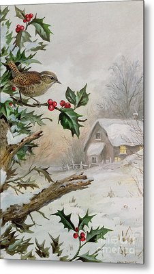 Wren In Hollybush By A Cottage Metal Print by Carl Donner