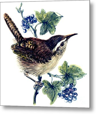 Wren In The Ivy Metal Print by Nell Hill