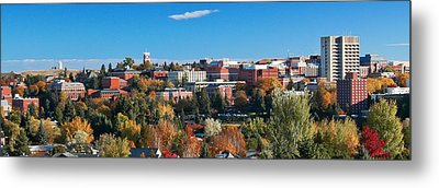 Wsu Autumn Panorama Metal Print by David Patterson
