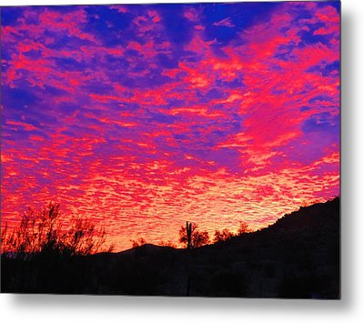 Y Cactus Sunset 1 Metal Print