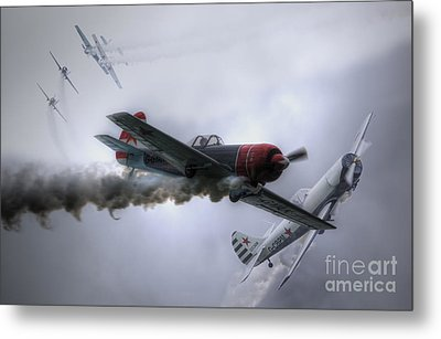 Yak Display Team Metal Print by Nigel Bangert