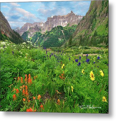 Yankee Boy Basin Metal Print by Tim Fitzharris