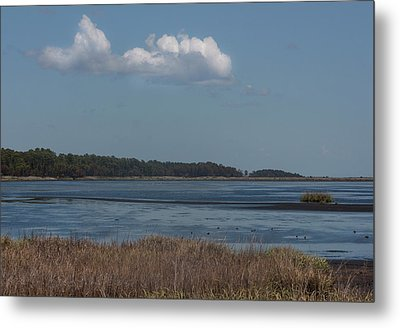 Yawkey Wildlife Reguge - View From The Causeway Metal Print by Suzanne Gaff