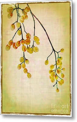 Yellow Berries Metal Print