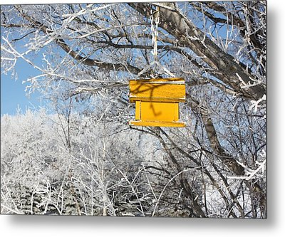 Yellow Bird House Metal Print by Pat Purdy