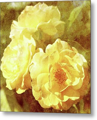 Yellow Bunch Vintage Metal Print by Cathie Tyler