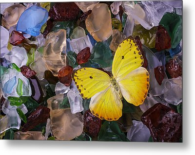 Yellow Butterfly On Sea Glass Metal Print by Garry Gay