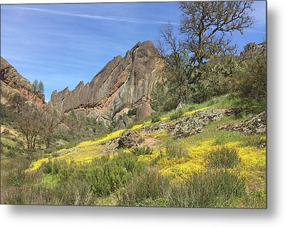 Metal Print featuring the photograph Yellow Carpet by Art Block Collections