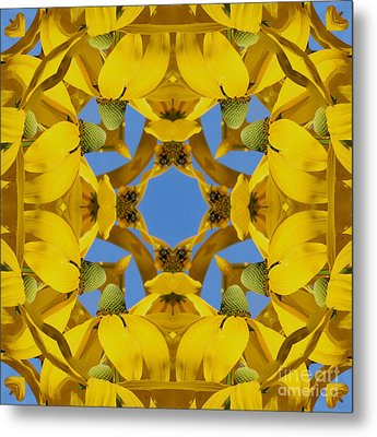 Metal Print featuring the photograph Yellow Coneflower Kaleidoscope by Smilin Eyes  Treasures