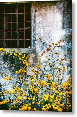 Metal Print featuring the photograph Yellow Flowers And Window by Silvia Ganora