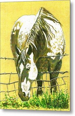 Yellow Horse Metal Print