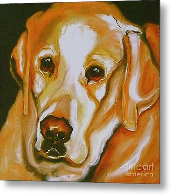Yellow Lab Amazing Grace Metal Print