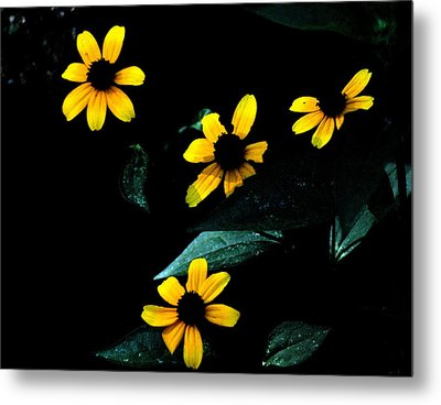 Metal Print featuring the photograph Yellow by Laura DAddona