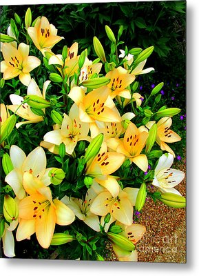Metal Print featuring the photograph Yellow Lilies 2 by Randall Weidner