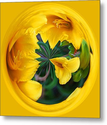 Metal Print featuring the photograph Yellow Lily Orb by Bill Barber